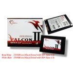Solid State Drive > SATA II > [ FALCON II ] FM-25S2I-64GBF2